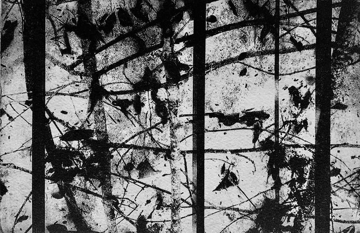 Print - Fragments